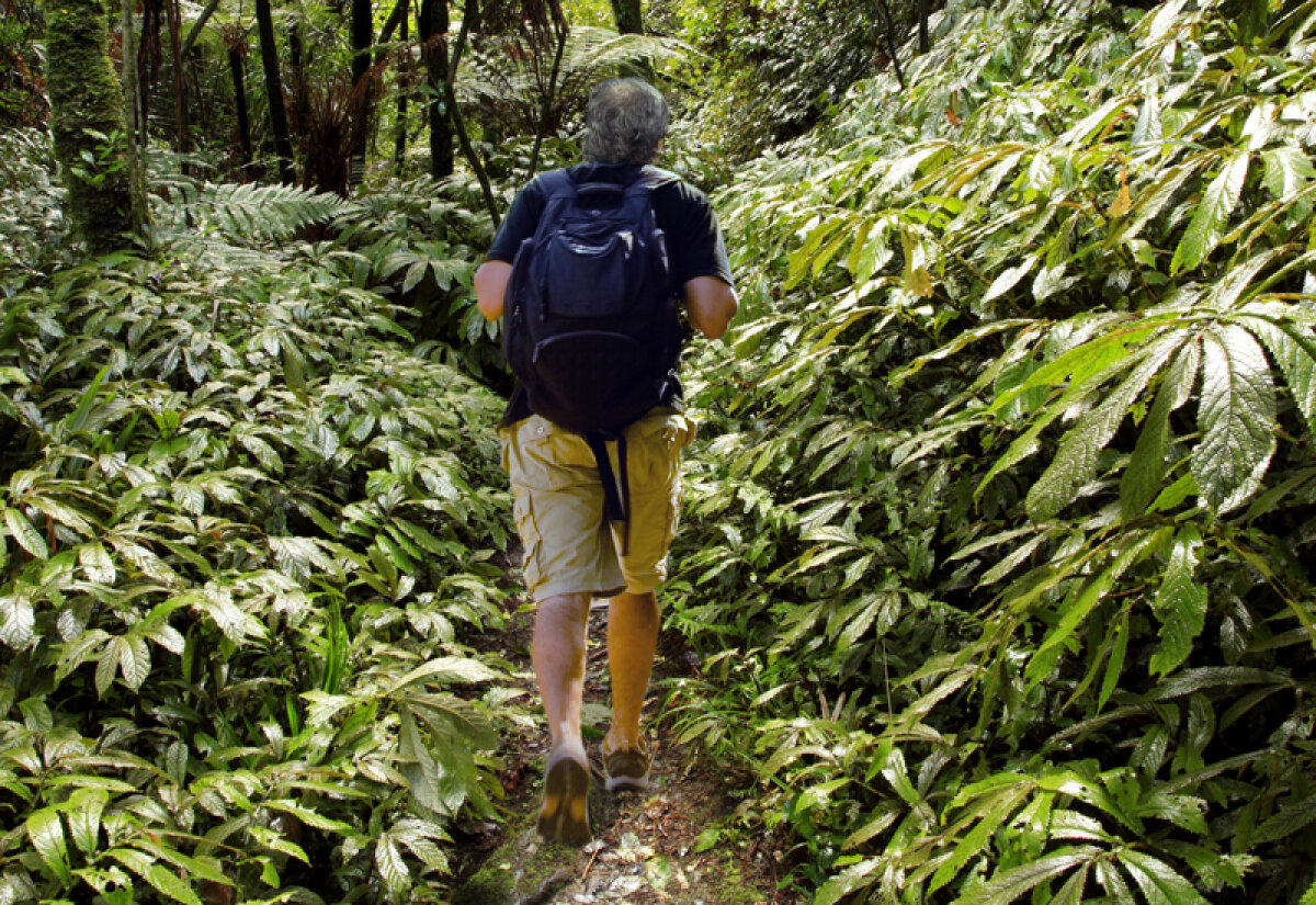 """Amintirile lui Stoichiţă în America Centrală: """"În Panama mă spălam la cişmea şi căutam fotbalişti în junglă!"""""""