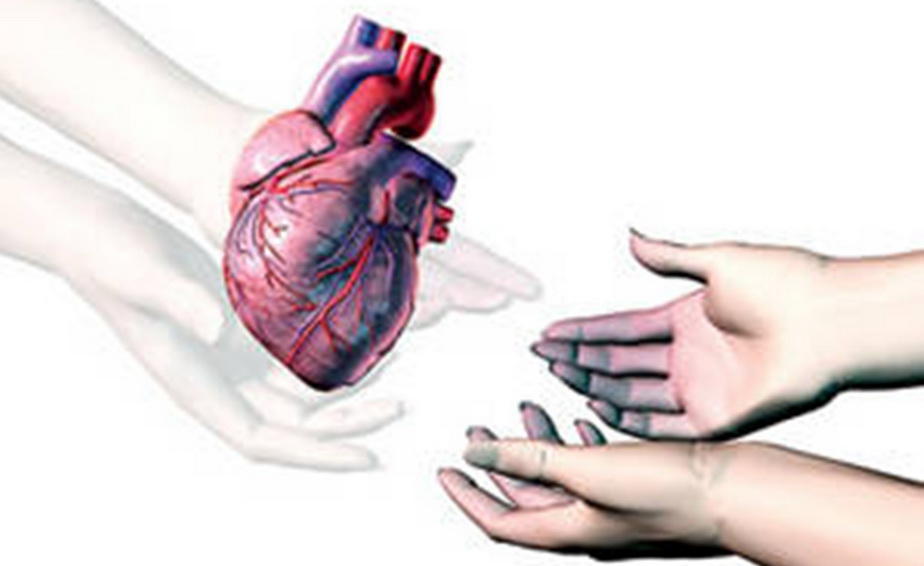 Parlamentul unei ţări din UE a votat o lege care permite înregistrarea tuturor adulţilor ca donatori de organe
