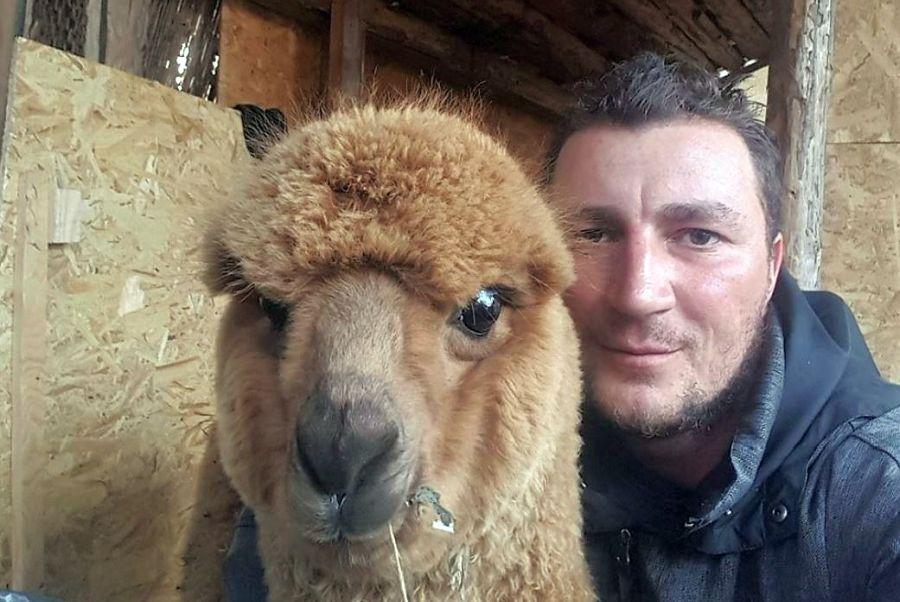 marian godina alpaca