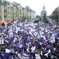 Suporterii Timișoarei sînt revoltați în urma deciziei UEFA