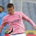 Chiar dacă pleacă de la Palermo, Goian poate rămîne în Serie A