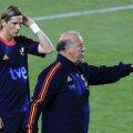 Fernando Torres (stînga) nu a fost convocat de către Vicente del Bosque. Foto: Reuters