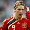 Dacă nu-și va reveni, Torres ar putea rata Euro 2012