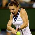 Simona Halep are drept cea mai bună performanţă de pînă acum la Miami atingerea turului al 3-lea în 2012 şi 2013 // Foto: Mediafax-AFP