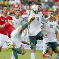 Lafferty (alb, în duel cu Varga) a fost omul meciului în victoria nord-irlandezilor