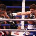 JoJo Dan e boxer cu gardă inversă, upercutul de stînga fiind principala sa lovitură Foto: Raed Krishan