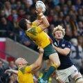 Australienii au muncit din greu să treacă de scoțieni și sînt la a cincea semifinală din istorie // Foto: Reuters