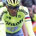 Alberto Contador la finalul etapei a doua, foto: reuters