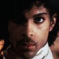 Prince ► Foto: hepta.ro