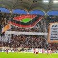 Coregrafie a fanilor dinamoviști care cer stadion fără pistă până în 2020 FOTO: Raed Krishan