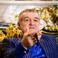 Averea lui Gigi Becali e estimată la 200 de milioane de euro // FOTO: Bogdan Dănescu