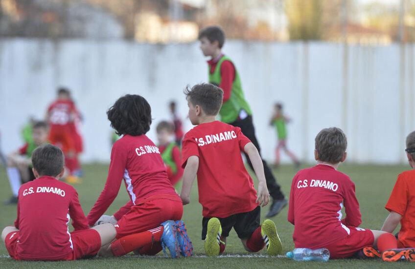 Până să ajungă în grija lui Badea, copiii de la CS Dinamo se antrenau pe unde apucau // Foto Alex Nicodim