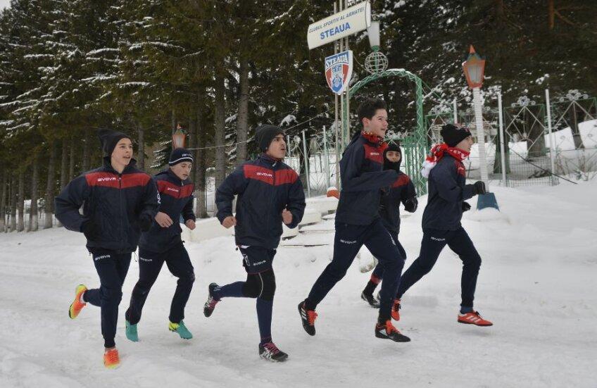 CSA Steaua se bazează momentan doar pe grupe de juniori