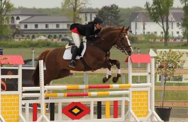foto: equestria.ro