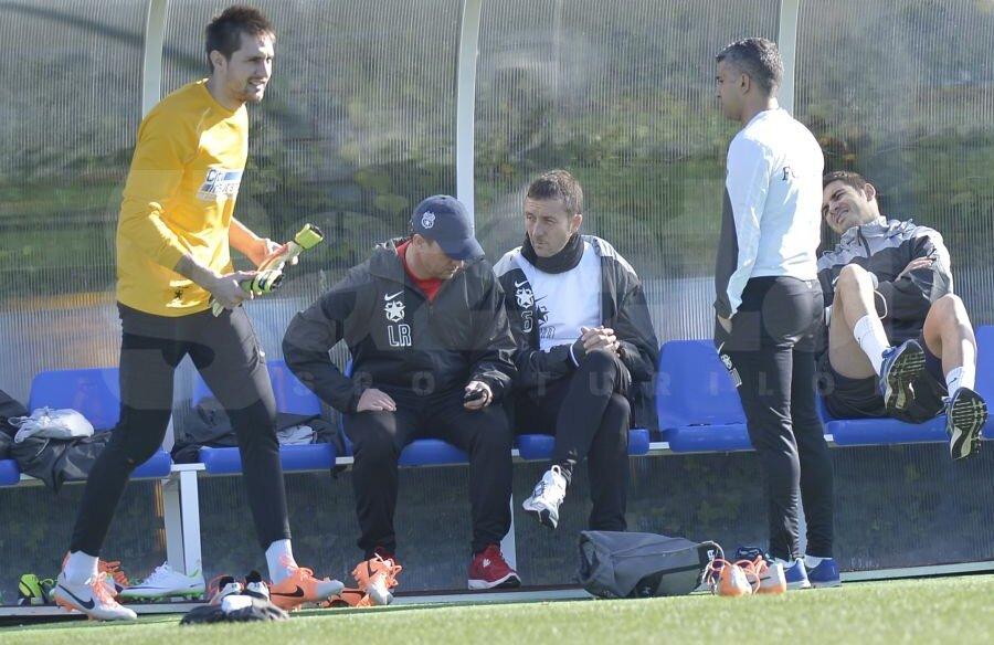 Laurentiu Reghecampf Mihai Stoica Banca Rezerve Steaua Gigi Becali Luat Decizie Privinta  Singur Absent Returul Dinamo Cupa