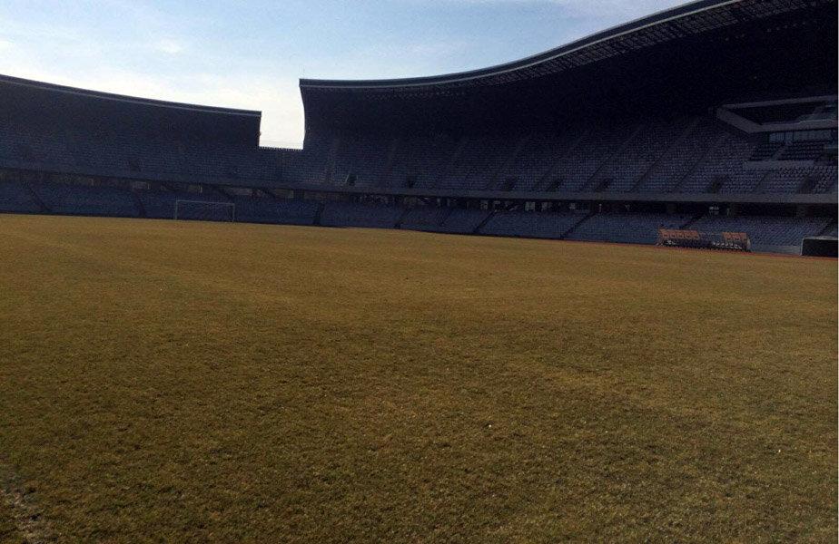 Gazonul arată foarte bine după trecerea iernii și va fi protejat complet până la meci
